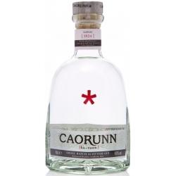 GIN CAORUNN 100 cl