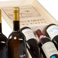 Castelfranci Vini