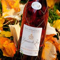 Armagnac Joy
